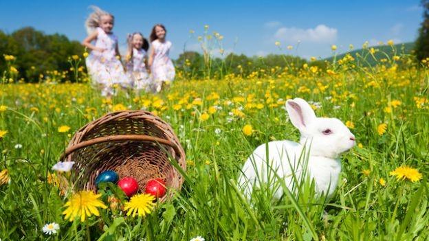Menu di Pasqua senza stress per gli Amministratori di condominio – Marco Sampietro Catering Grasch